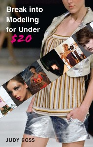 Break Into Modeling For Under 20 Dollars Book Cover
